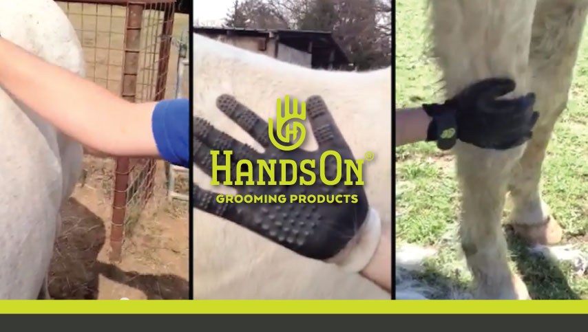 HandsOn Gloves Grooming